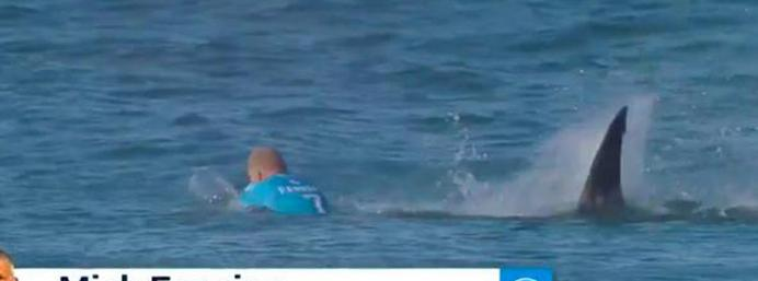 Professional surfer attacked by shark during competition