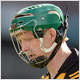 Shefflin crucial to draw result