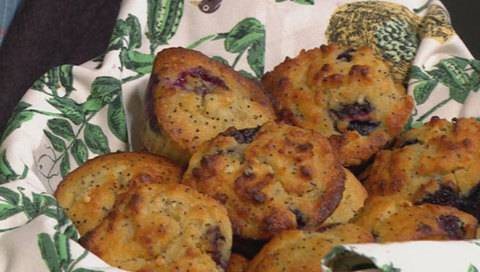 Blueberry and poppy seed cakes