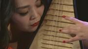 Dawn Wang